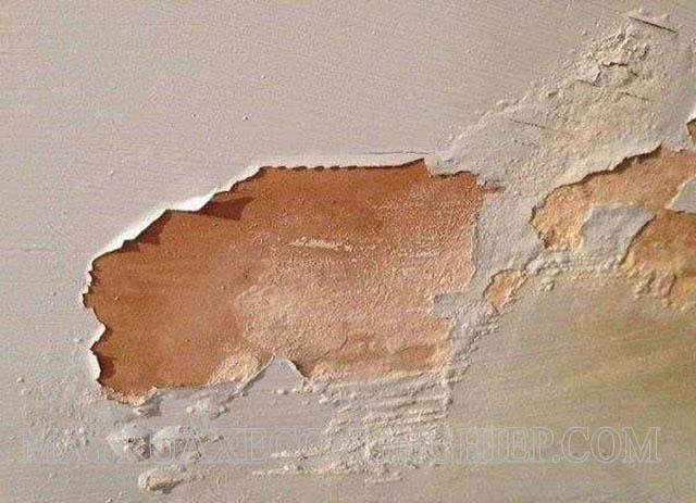 Tường bị muối hóa do độ ẩm và nồng độ muối cao